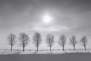 Prelude-To-Silence-VII-SZP-JK.jpg